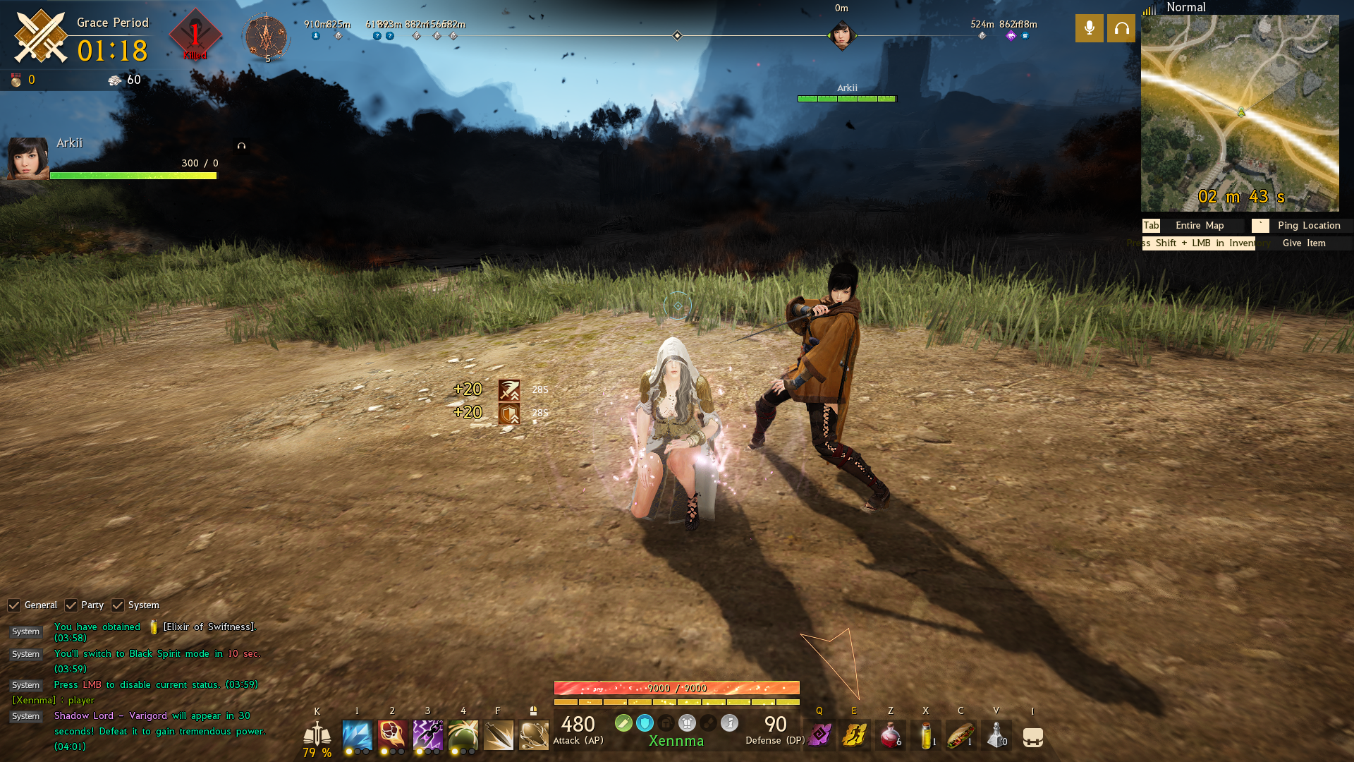 Screenshot of Xennma and Arkii on North America server in Team Mode.